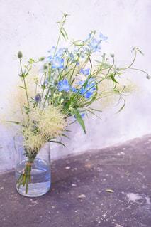 青い花は珍しいので、デルフィニウムの花束はなんだか特別!の写真・画像素材[823538]
