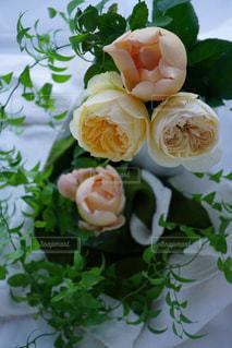 近くの花のアップの写真・画像素材[911230]