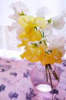 近くの花のアップ - No.952713