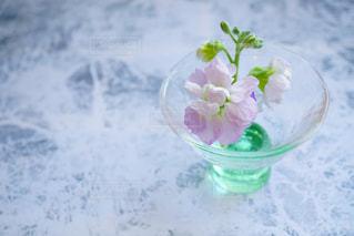 水で満たされた花瓶の写真・画像素材[972392]