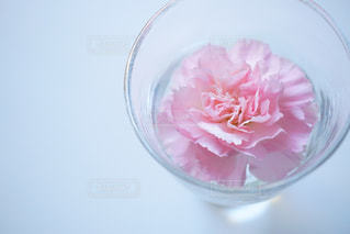 ピンクの花で満たされた透明なガラス ボウルの写真・画像素材[973538]