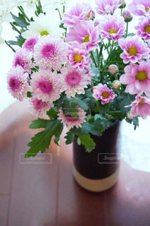 紫色の花一杯の花瓶の写真・画像素材[1138980]