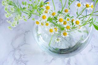 テーブルの上の花の花瓶の写真・画像素材[1140700]