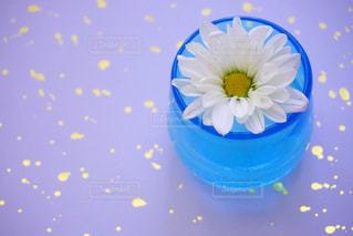 水で満たされた花瓶の写真・画像素材[1153644]
