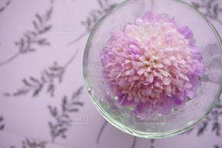 紫色の花一杯の花瓶の写真・画像素材[1169933]