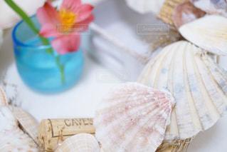 貝殻🐚リースの写真・画像素材[1188902]