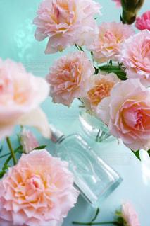近くの花のアップの写真・画像素材[1223157]