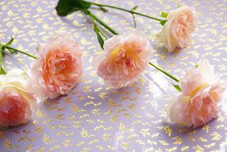 近くの花のアップの写真・画像素材[1223160]
