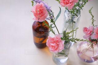 花の写真・画像素材[1348822]