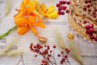 テーブルの上に食べ物の束の写真・画像素材[1401356]