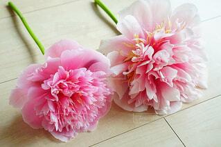 まな板の上にピンクの花の写真・画像素材[4560373]