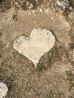 浜辺のハート型の石の写真・画像素材[343363]