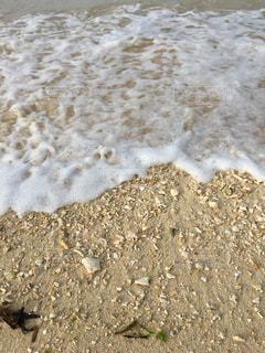 海の写真・画像素材[343390]