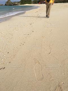 海の写真・画像素材[343392]