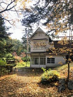 秋の黄葉と家の写真・画像素材[2791444]