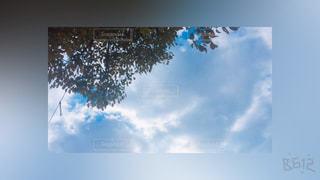空の写真・画像素材[343693]