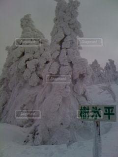 No.344513 冬
