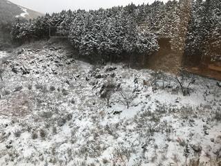 雪の写真・画像素材[343836]