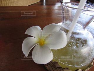花の写真・画像素材[345135]