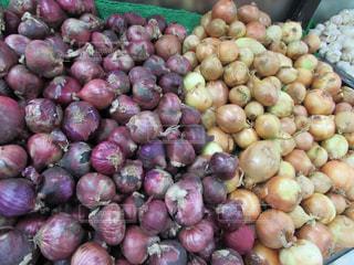 野菜の写真・画像素材[345137]