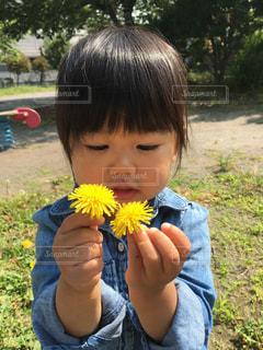 子どもの写真・画像素材[345155]