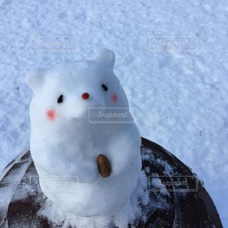 冬の写真・画像素材[344375]
