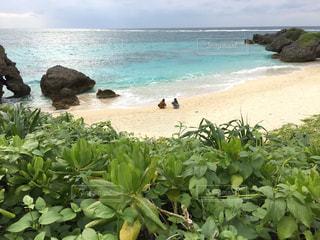 水の体の近くのビーチの人々 のグループの写真・画像素材[710156]