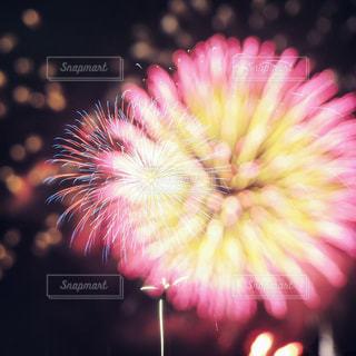 空の花火の写真・画像素材[2375761]