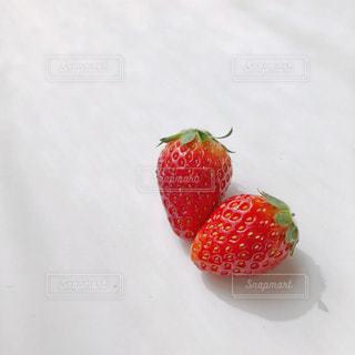 果物の一部の写真・画像素材[3032084]