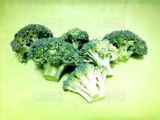 野菜の写真・画像素材[344833]