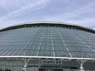 東京ドームの写真・画像素材[345505]