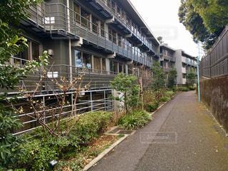 No.349342 風景