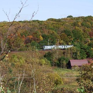 秋晴れの北海道の写真・画像素材[1558713]