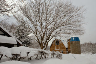 北海道の冬の写真・画像素材[1721189]