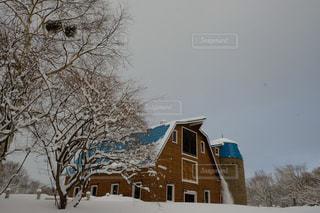 雪国暮らしの写真・画像素材[1721190]