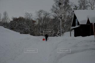 雪かきの写真・画像素材[1721194]