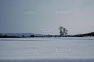 雪の海原の写真・画像素材[1825956]