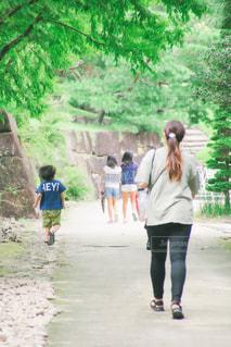 草の中を歩く人々のグループの写真・画像素材[2430071]