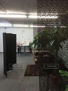 室内装飾の写真・画像素材[350292]