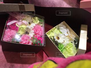 花の写真・画像素材[347537]