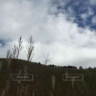 空の写真・画像素材[372002]
