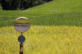 田舎の写真・画像素材[345903]