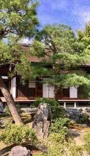 家の前の木の写真・画像素材[2723026]
