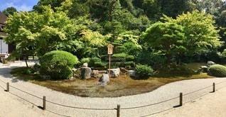 庭のベンチの写真・画像素材[2762922]