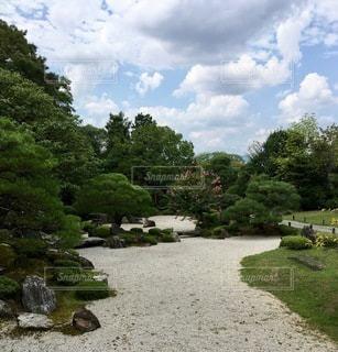 公園の石道の写真・画像素材[2764108]