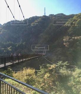 水域に架かる橋の写真・画像素材[2768699]