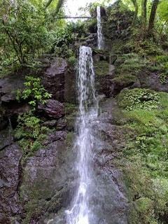 木々に囲まれた滝の写真・画像素材[3430195]