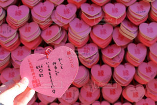 ピンクの写真・画像素材[350878]