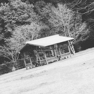 庭の写真・画像素材[346412]