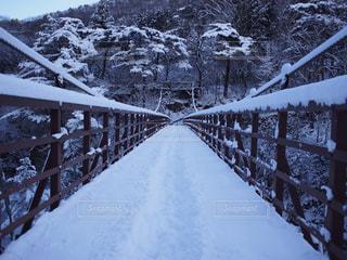 橋の写真・画像素材[346394]